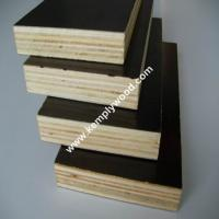 China Phenolic film faced plywood board price/ structural plywood/ film faced shuttering plywood on sale
