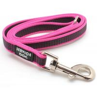 Custom Print Logo 100% Nylon Pet Dog Collars and Leashes Wholesale in Factory Price Manufactures