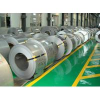 Magnetic Raw Materials , 201 / 301 / 304 Stainless Steel Strips Plumbing Shower Hose Manufactures