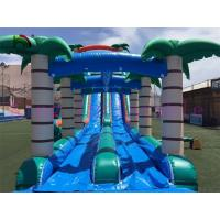 Selva Double Lanes PVC Inflatable Water Slide Green / Blue Slide With Swimming Pool