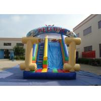 Kids Bouncy Castle With Slide 8 X 4 X 4.5m , Customized Bouncy Castle Water Slide Manufactures