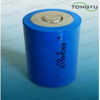 ER34615 LiSOCL2 Lithium Thionyl Chloride Battery 3.6V 19000mAh for Car Electronics Manufactures