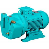 China Shanghai Yulong 0.75KW cast iron liquid ring vacuum pump for autoclave sterilizer on sale