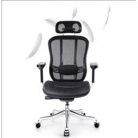 Mesh Back Ergonomic Task Chair Specially Designed For Sedentary People Manufactures