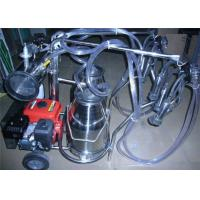 Trolley type Gasoline Engine Portable Cow Milking Machine For Farm Manufactures