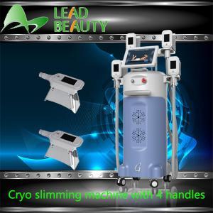 Fat Feeze non-invasive weight loss lipocryo 4 handles cryolipolysis machine