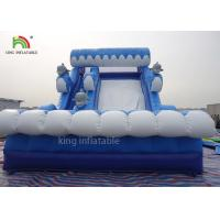 Shark Model Inflatable Dry Slide Adults Play For Beach 2 Years Warranty Manufactures
