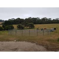 Horse Arenas  30 METER Heavy Duty 6 Oval Rail - Cattle Yard Victoria Manufactures