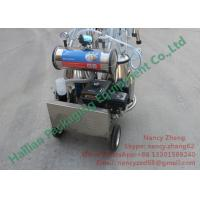 China CE Certificate Portable Milking Machine for Cow Dairy Farm Milking on sale