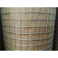 "1/2 "" Hot Dip Galvanized Welded Wire Mesh Rolls With 0.8 mm Wire For USA market Manufactures"