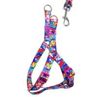 Quality custom print Design Reflective Bungee Hands Free Dog Leash with Waist Belt for sale
