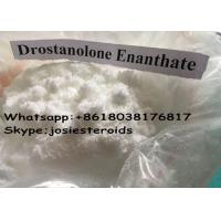 Cheap Natural Anabolic Steroid Injection Drostanolone Enanthate / Masteron Enanthate Muscle Gain for sale