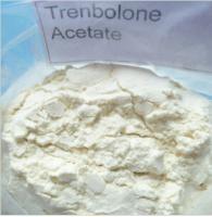99.5% Assay Trenbolone Acetate Steroid CAS 10161-34-9 / Fat Cutting Steroids Manufactures