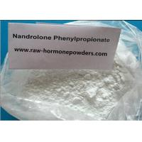 99.4% Cutting Cycles Steroid /Nandrolone phenylpropionate For Body Builders , White Powder Manufactures