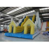 Snow Mountain Big Inflatable Water Slides , Amusement Park Commercial Grade Water Slide Manufactures