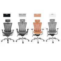 Mesh Back Ergonomic Executive Chair Light Aluminum Frame With 3D Armrest Manufactures