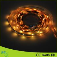 Ip68 / Ip67 High Efficacy Led Rope Lights / Warm White 3900k / 3200k Manufactures