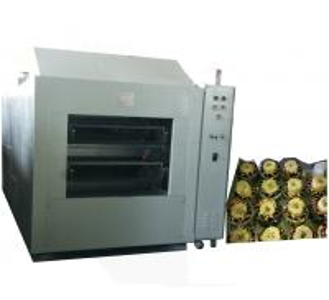 Pump Stator varnish dipping machine Manufactures