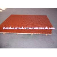 Red Spray Paint Heavy Gauge Screen Mesh , Square Heavy Duty Metal Mesh Screen Manufactures