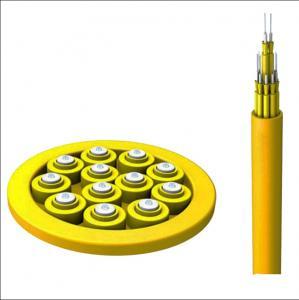 Distribution 24 Pair Fiber Optic Cable Singlemode G652D FRP Strength Member Manufactures