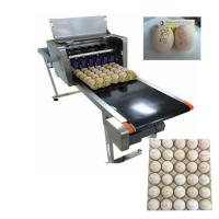 Flexible Egg Marking Equipment With Six 45ml Various Colors Cartridges