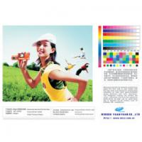 high quality polyeater art canvas for indoor decoration Manufactures
