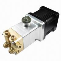 0.3L High-pressure Pump, Uses Brushless DC Motor Manufactures
