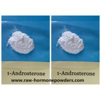CAS 76822-24-71-Andro  Prohormone Powder 1-DHEA 1-Androsterone Manufactures