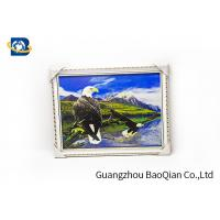 3D Gift PET 3D Lenticular Pictures Flips Photo Of Eagle Animal Support Printing Service Manufactures
