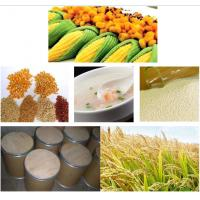 Phytase improve feed phosphate utilization , feed additives Manufactures