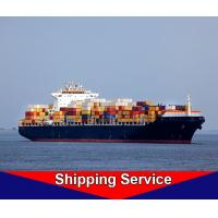 FCL Sea Freight Forwarder , Ocean Shipping Logistics Shenzhen To Hamburg Manufactures