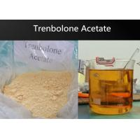 China Powder Anabolic Trenbolone Acetate Steroid / Pharma Raw Materials For Muscle Bulking on sale