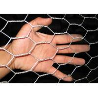 "Construction Reinforcement Electric Galvanized Welded Wire Mesh 1/2""*1/2""*1.2M*20M*15Kg Manufactures"