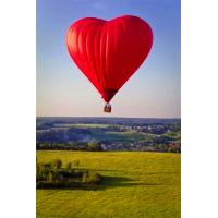 China Commercial Outdoor Inflatable Balloons For Advertising , Hot Air Balloon on sale