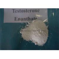 China 99% Assay USP Standard Anabolic Steroid powder Enanthate CAS 315-37-7 on sale