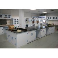 Easily Assembled Lab Table Workbenches / Durable PP Laboratory Casework Manufactures
