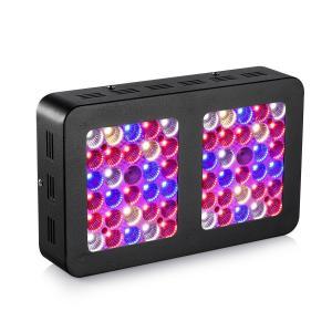 300 watt Indoor LED Grow Lamp 5424 Lm  ,  LED Flower Grow Lights Black Body Manufactures