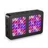 Buy cheap 300 watt Indoor LED Grow Lamp 5424 Lm , LED Flower Grow Lights Black Body from wholesalers
