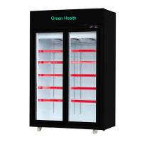 Supermarket Upright Freezer with Glass Doors on Wheels Blast Freezer Manufactures