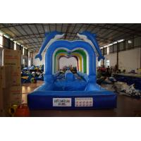 Durable Commercial Inflatable Water Slides , Cute Dolphins Cartoon Long Water Slip N Slide Manufactures