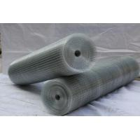 Cheap Hot dipped galvanized welded mesh/ black wire mesh panel/ PVC coated mesh for sale