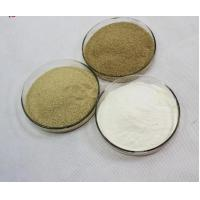 White  Feed Grade Enzymes Preservatives Extraordinary Stable Activity Manufactures
