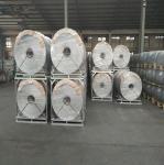 3000m 1 inch Chicken Wire Netting Hexagonal Wire Netting Galvanized Manufactures