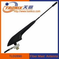 rubber mast radio car antenna/ car am fm radio antenna TLD2890 Manufactures