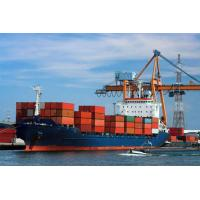 Experienced Door To Door Sea Freight Forwarding Services China To USA Manufactures