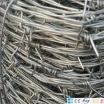2 strand Galvanized Iron Wire Manufactures