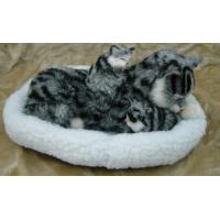 Life-like Animal/Synthetic Fur Animal/Artificial Fur Animal/Breathing Cat/Kitten/tabby cat Manufactures