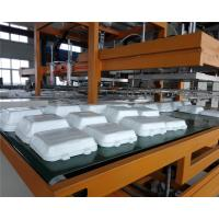 Mechanical Arm PS Foam Food Container Production Line Water Absorption Styrofoam Plate Making Machine Manufactures
