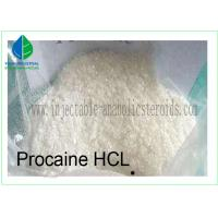 High Purity Local Anesthesia Chemicals Procaine Hydrochloride/Procaine HCl for Relieve Pain Manufactures