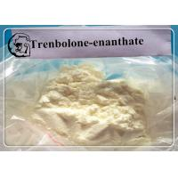 China Tren E Trenbolone Steroid Dosages and Cycle Length Trenbolone Enanthate on sale
